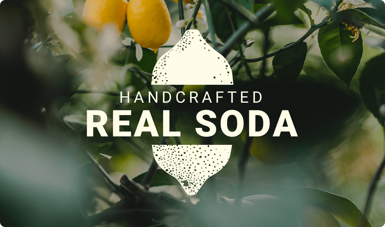 handcrafted real soda